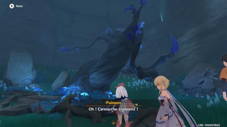 """Genshin Impact, notre guide pour la quête """"La mer de brouillard et le rite des arbres"""""""